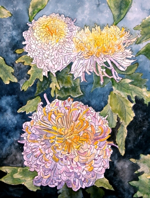chrysanthemum watercolor painting