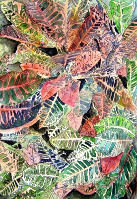 croton tropical plant painting