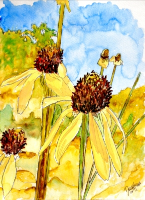 Flower watercolor paintings and art prints yellow cone flower watercolor paintings 11 x 15 watercolor painting yellow coneflower flower modern watercolor original painting mightylinksfo