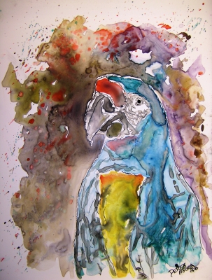 macaw parrot bird art painting