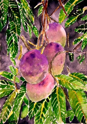 mango tree fruit still life painting