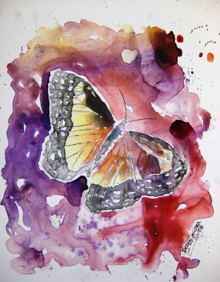 modern wildlife butterfly aceo watercolor painting