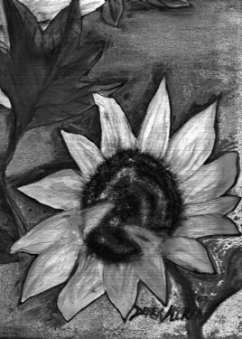 "Oil Sunflower Black and White"" Available from medium to huge fine art ..."