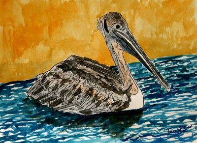 paintings of pelicans