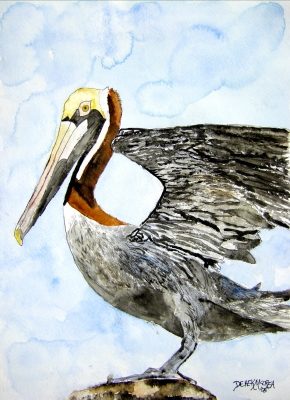 pelican bird wildlife watercolor painting