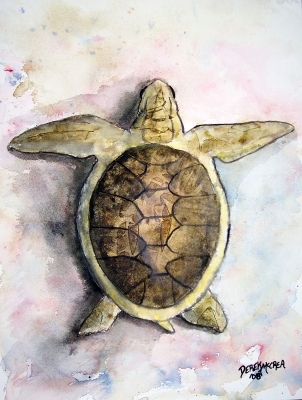 sea turtle art painting